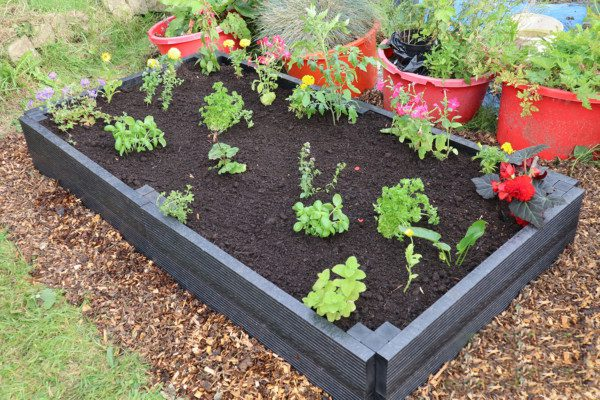 Raised Beds Starter Kit with extension